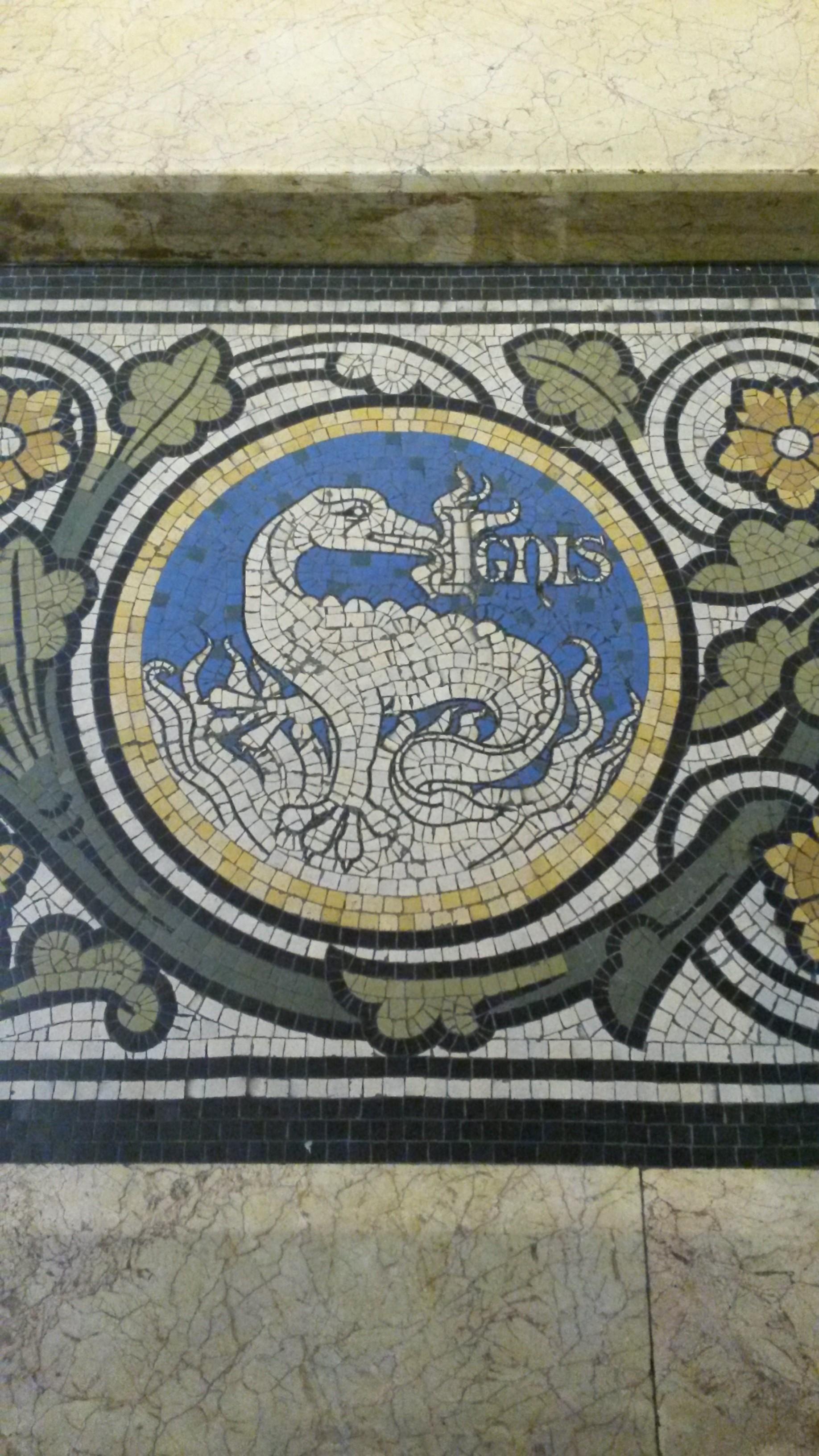 Salamander Symbols
