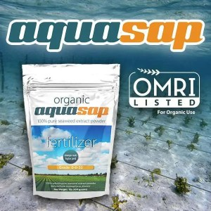 AquaSap Organic 0-0-35 Fertilizer