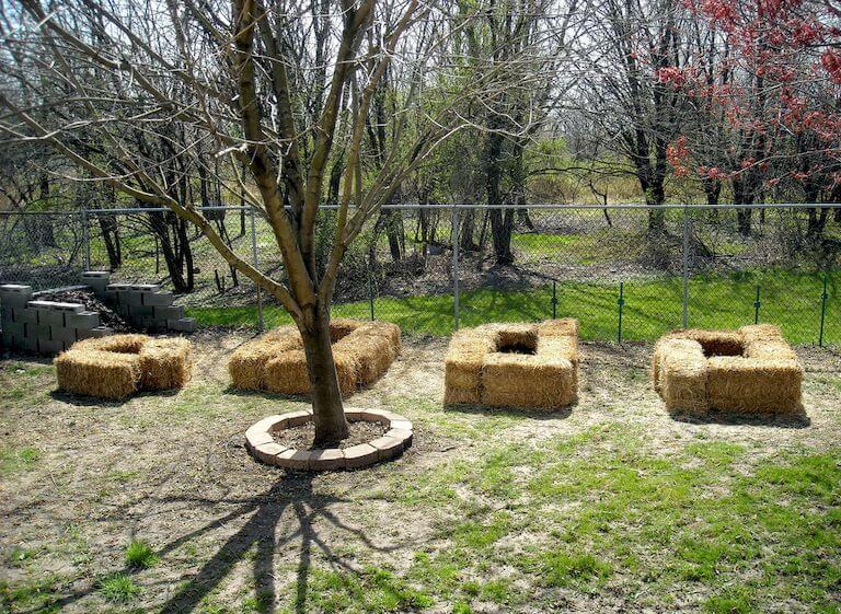Straw Bale Gardening Complete Beginner S Guide Long Read