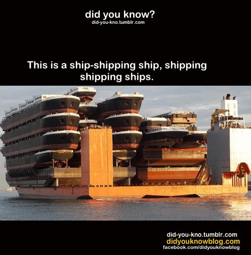 ship-shipping ship
