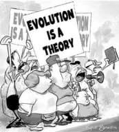 evolutionisatheory