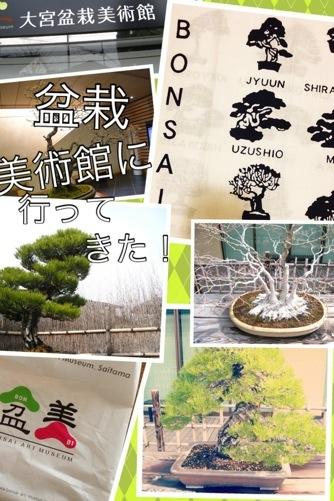 カバー画像(モレスキン絵日記)盆栽はアートだった!さいたま市大宮盆栽美術館に行ってきた!