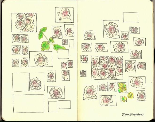 モレスキンアート:コペンハーゲンの薔薇