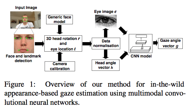 Appearance-Based Gaze Estimation in the Wild | Synced