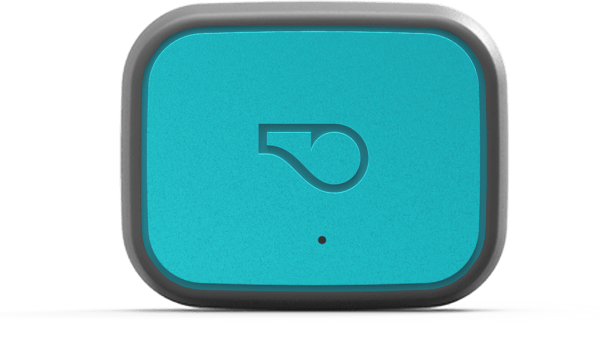 Smart pet trackers Whistle