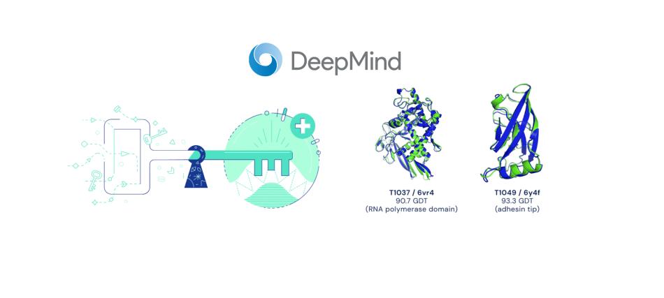 DeepMind-AlphaFold şema