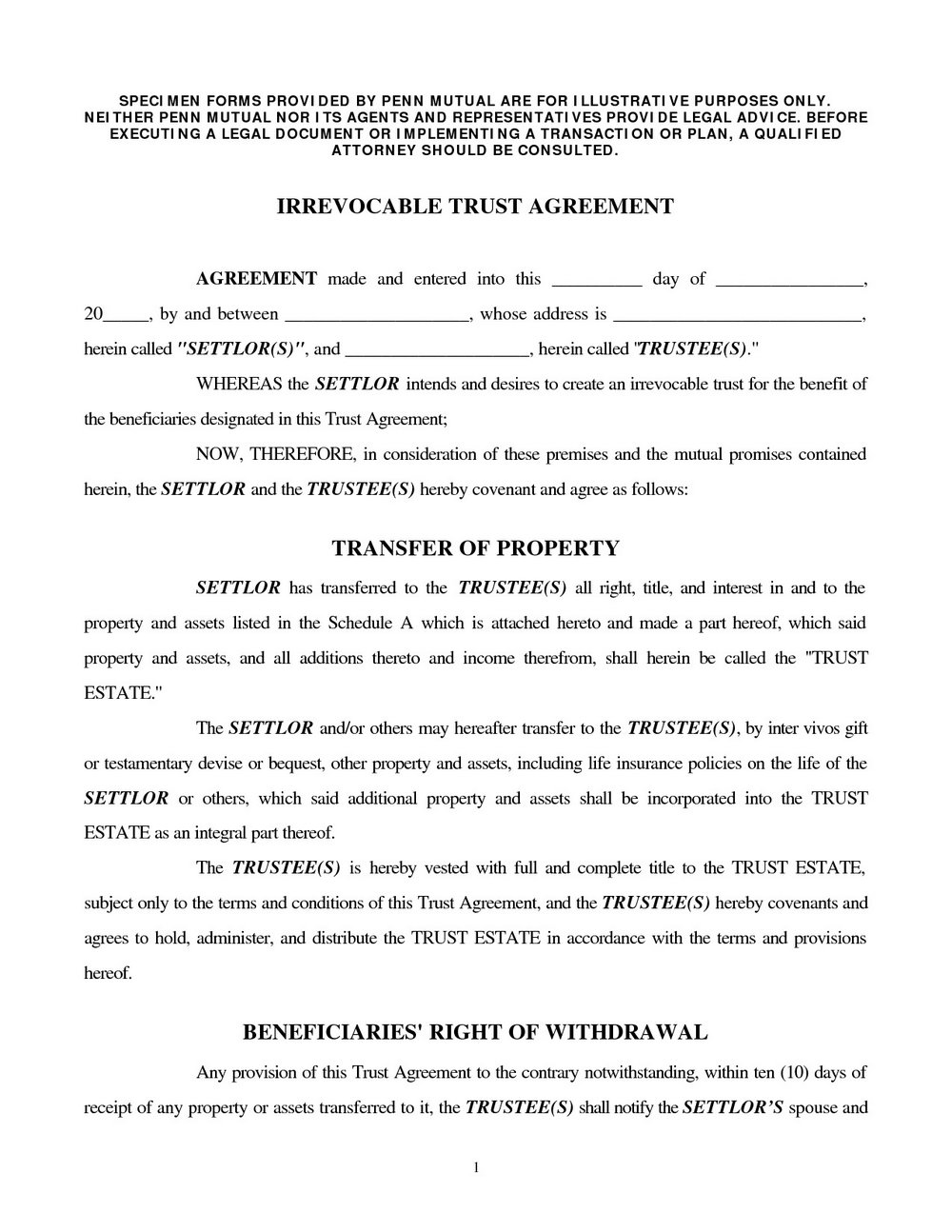 Irrevocable Trust Form