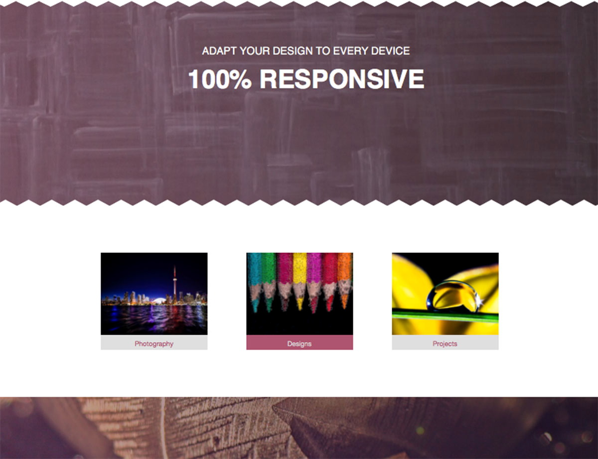 Muse Responsive Templates