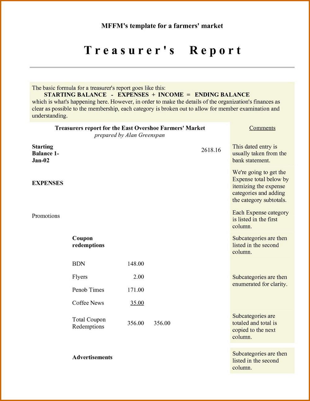 Non Profit Treasurer Report Template