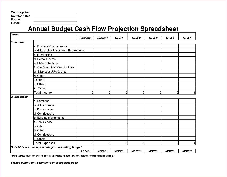 Simple Cash Flow Projection Template