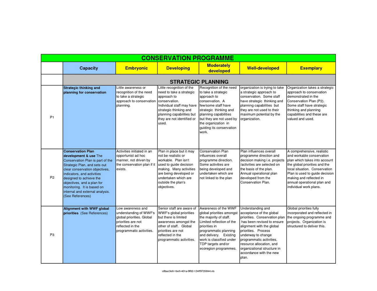 Strategic Account Plan Template Excel