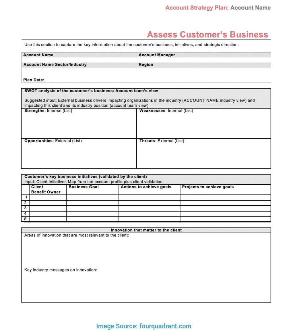 Strategic Account Plan Template Word