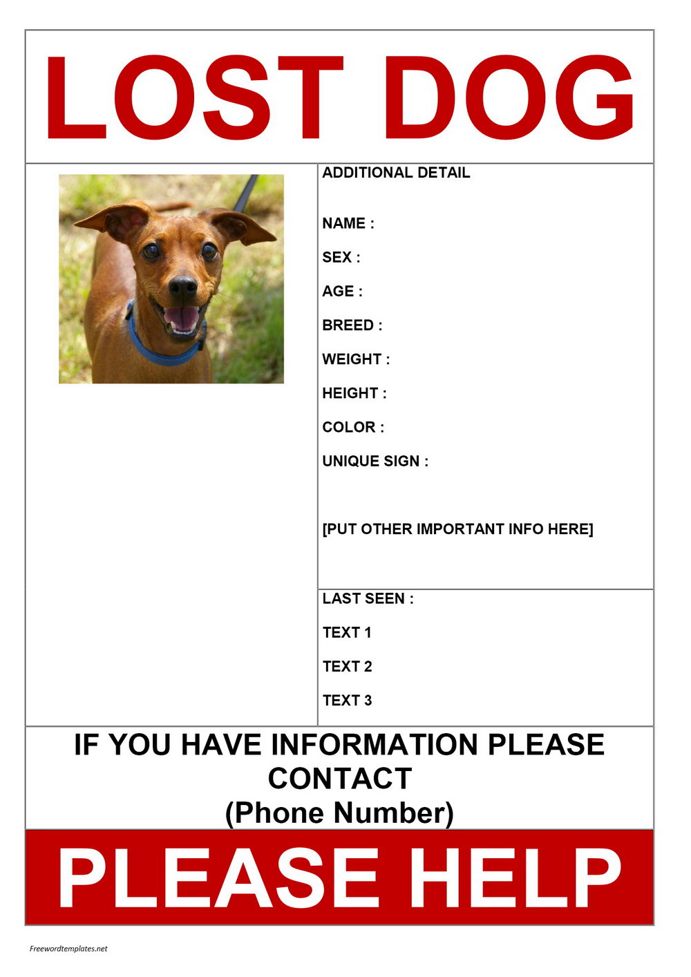 Lost Dog Poster Template Free