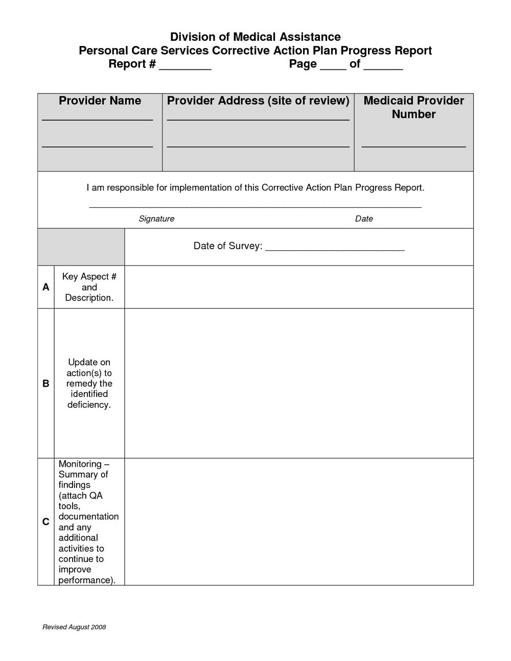 Plan Of Corrective Action Template