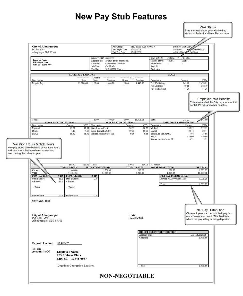 Employee Pay Stub Template Canada