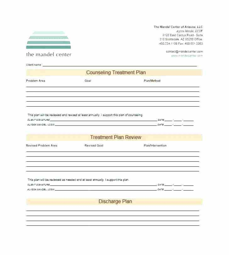 Chiropractic Treatment Plan Example
