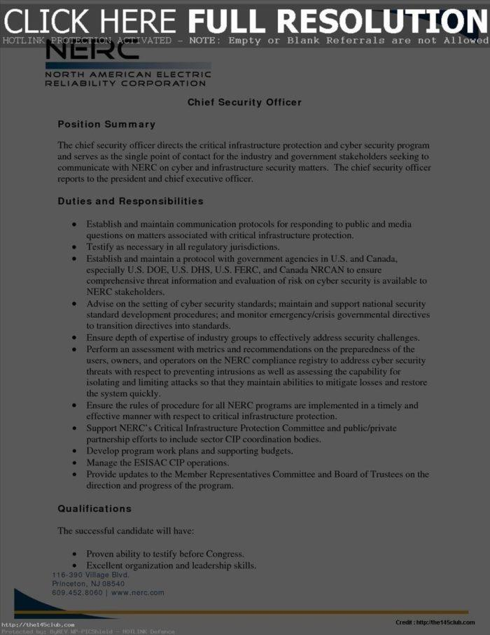 Cyber Security Strategy Template Dod