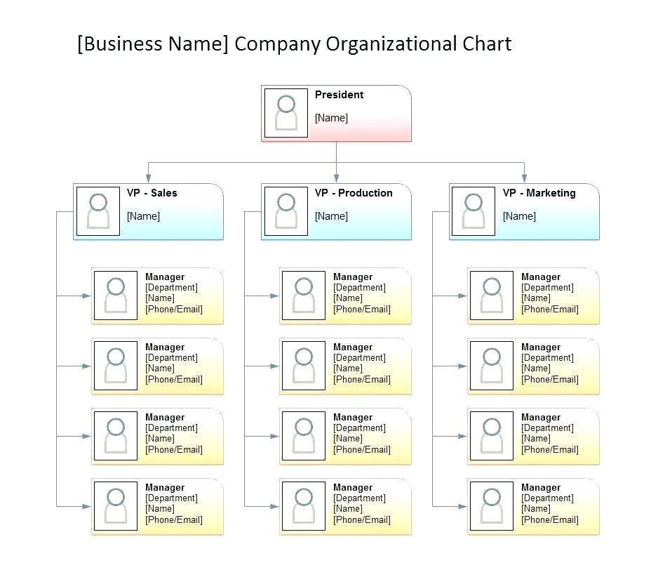 Microsoft Office Organizational Flow Chart Template