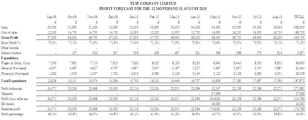 12 Month Projected Profit And Loss Templates