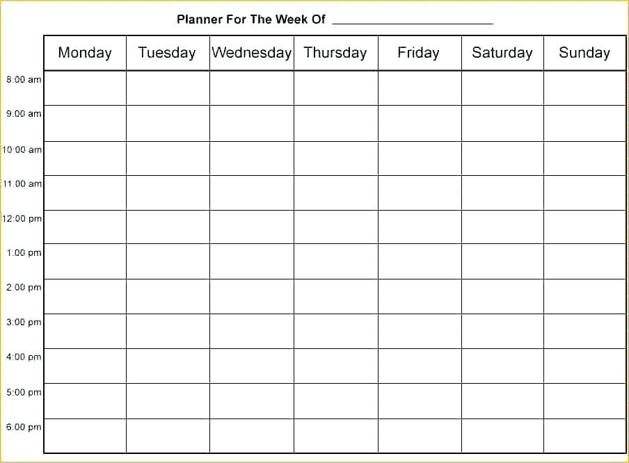24 Hour Nursing Schedule Template