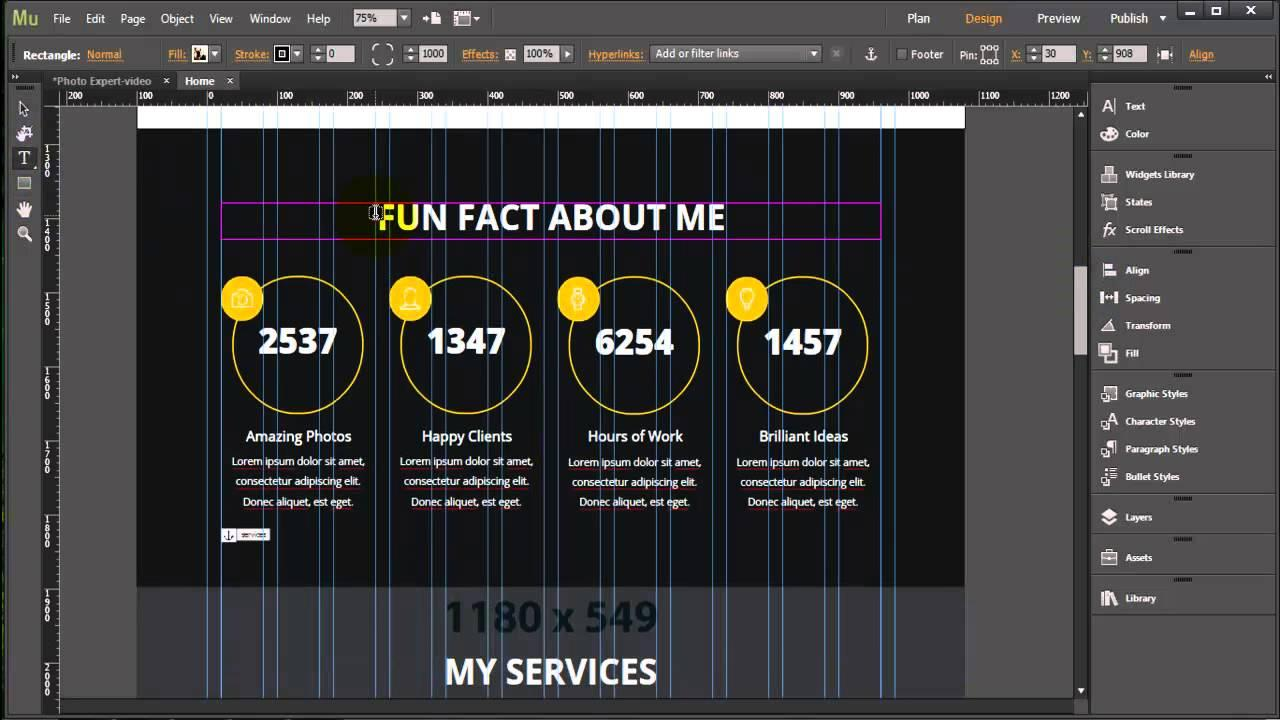Adobe Muse Photo Template