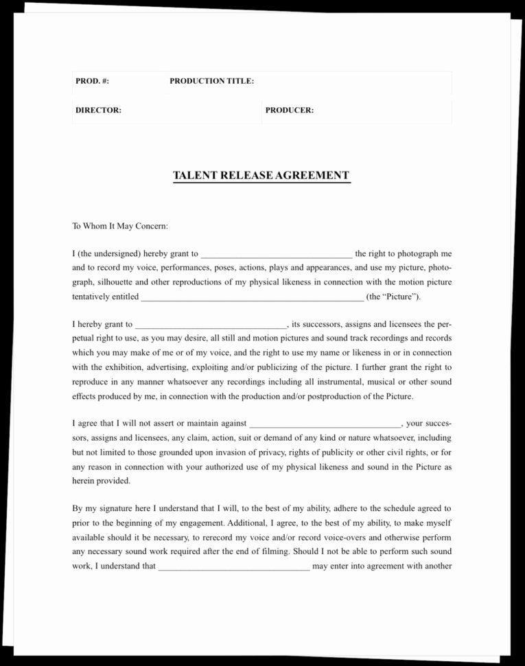 Artist Producer Agreement Template