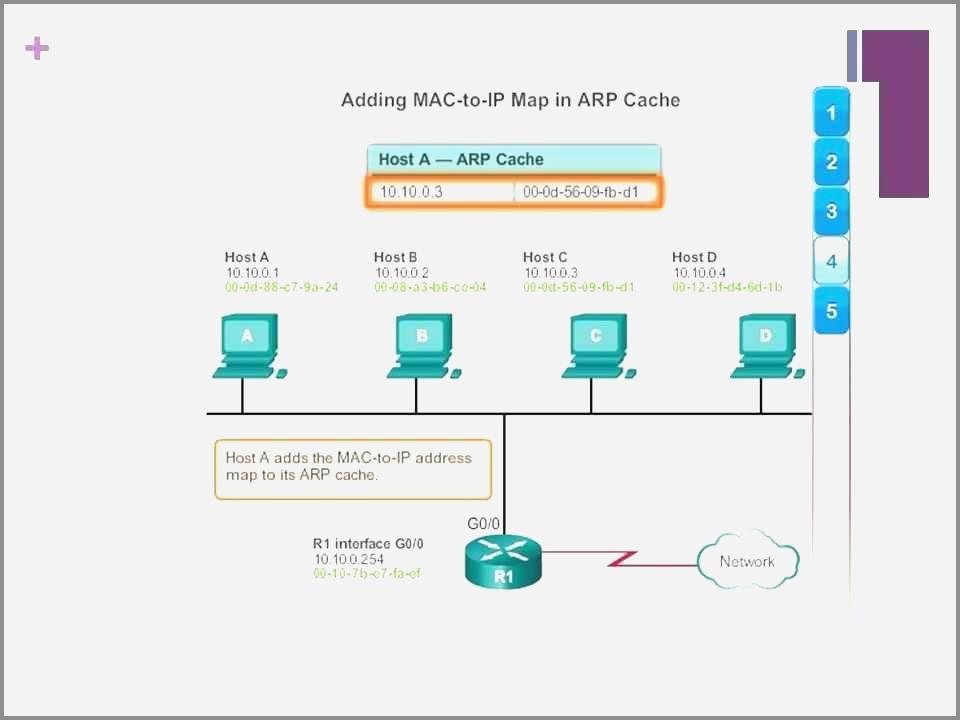 Asp.net Web Layout Templates