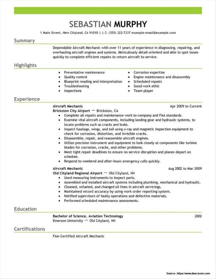 Aviation Manager Resume Template