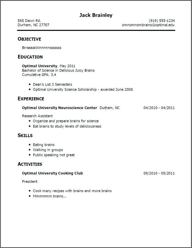 Beginner Job Resume Template