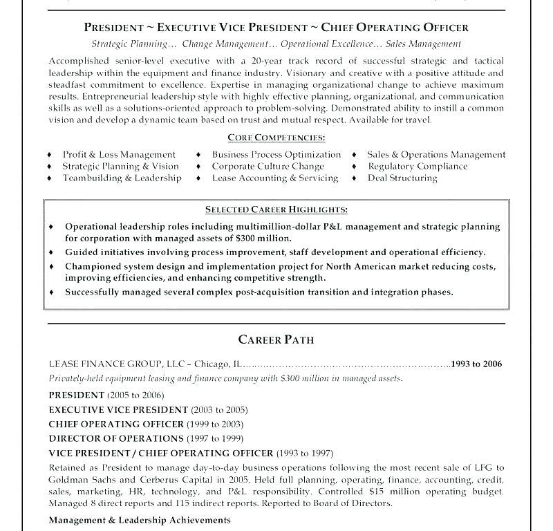 Best Ceo Cv Template