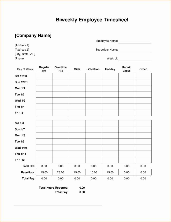 Bi Weekly Timesheet Template Free