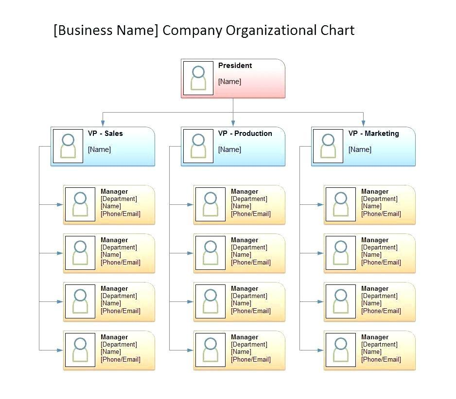 Blank Org Chart Template Word