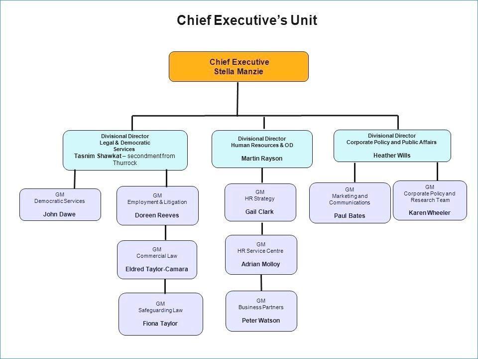 Blank Organizational Chart Template Word
