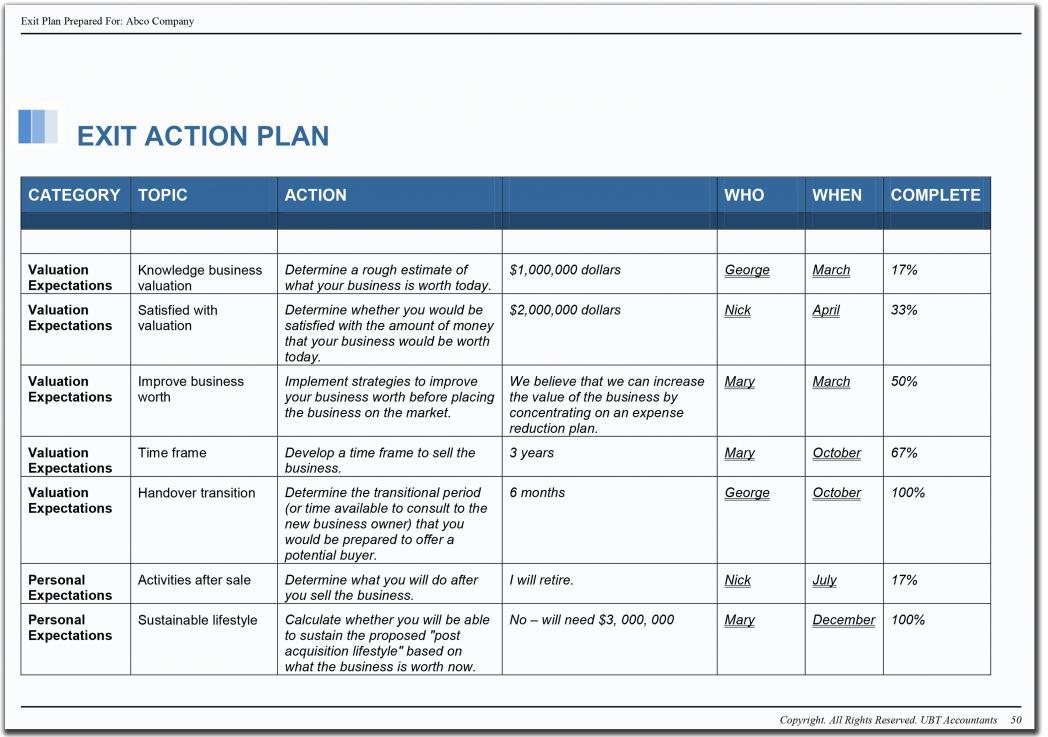Business Action Plan Template Xls