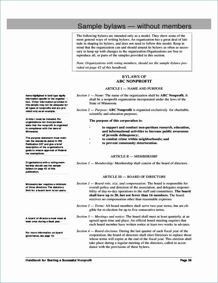 Bylaws Template Nonprofit Organizations California