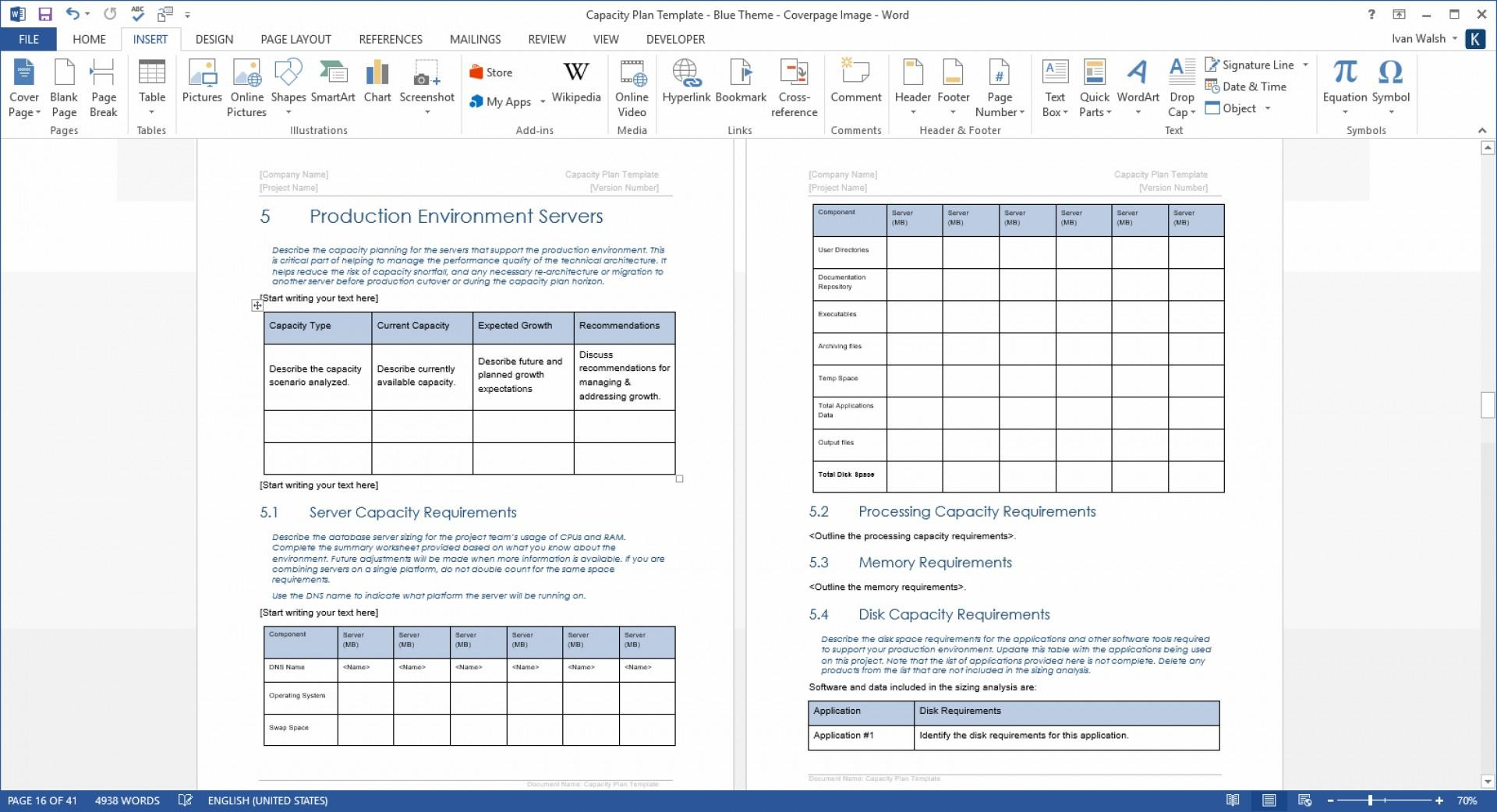 Capacity Planning Template Word