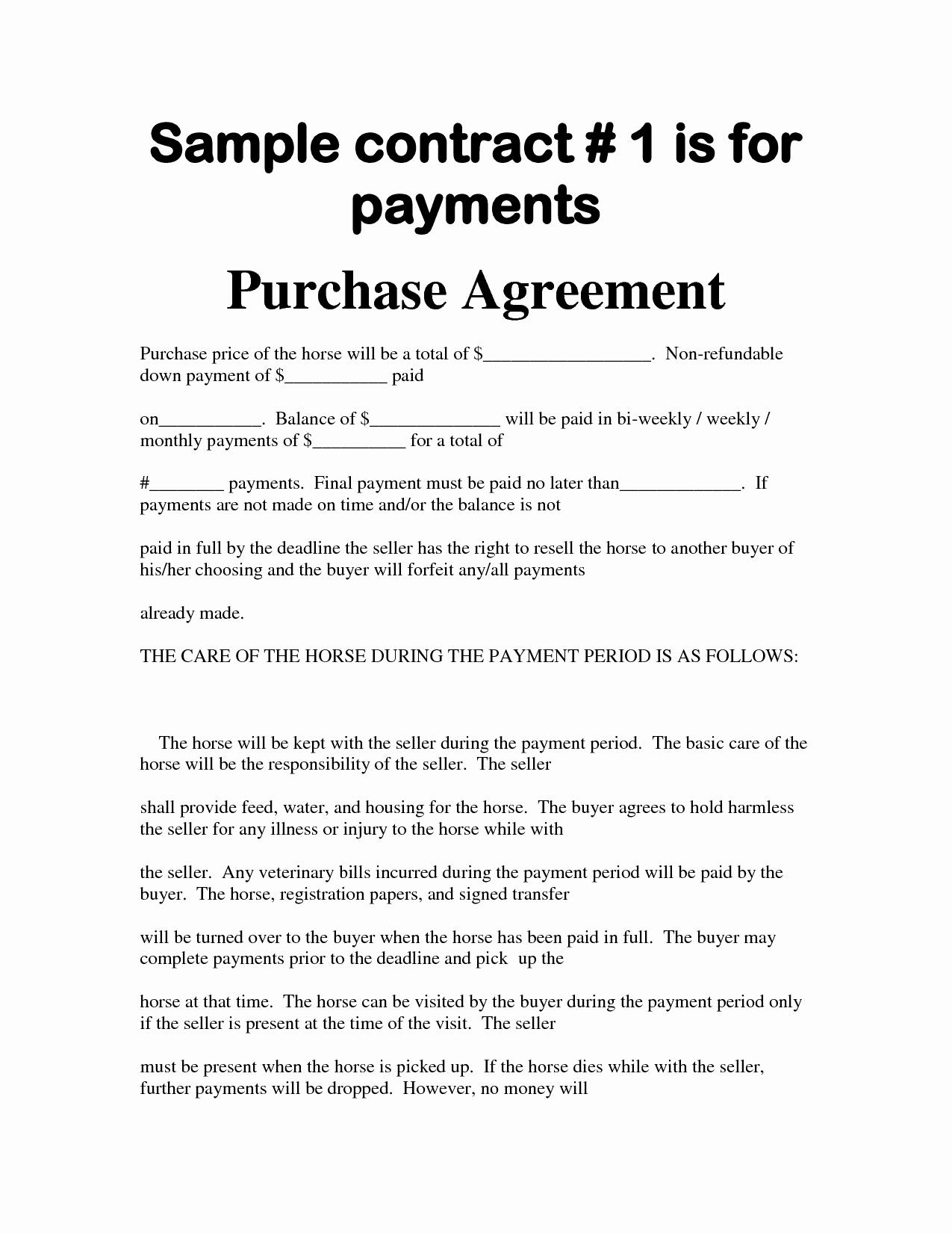 Car Financing Contract Template