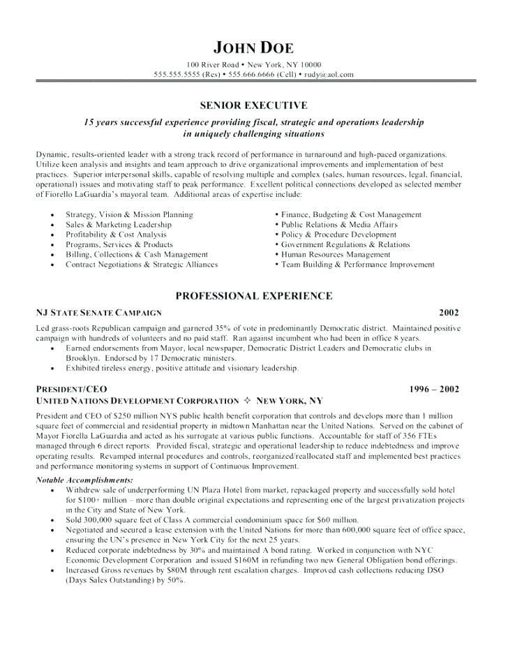 Ceo Cv Template Doc