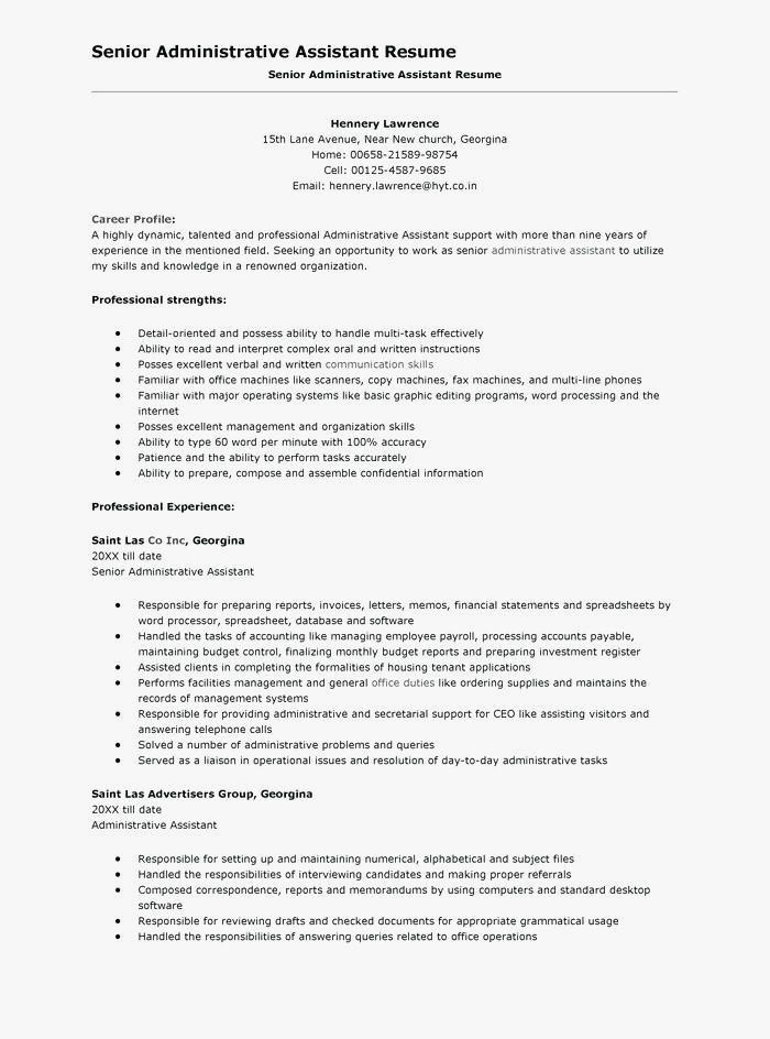 Chronological Resume Template Word 2013