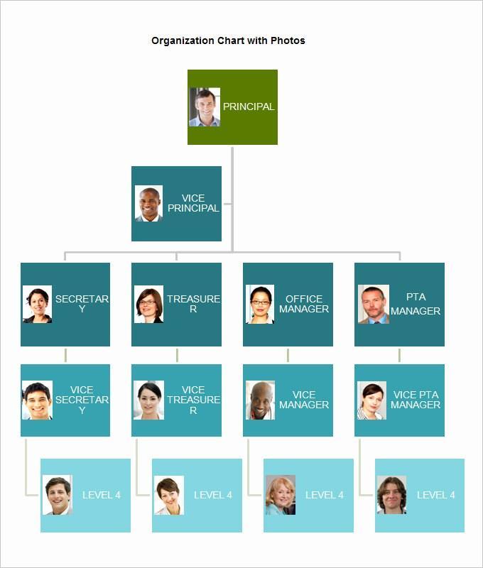 Church Organizational Chart Template