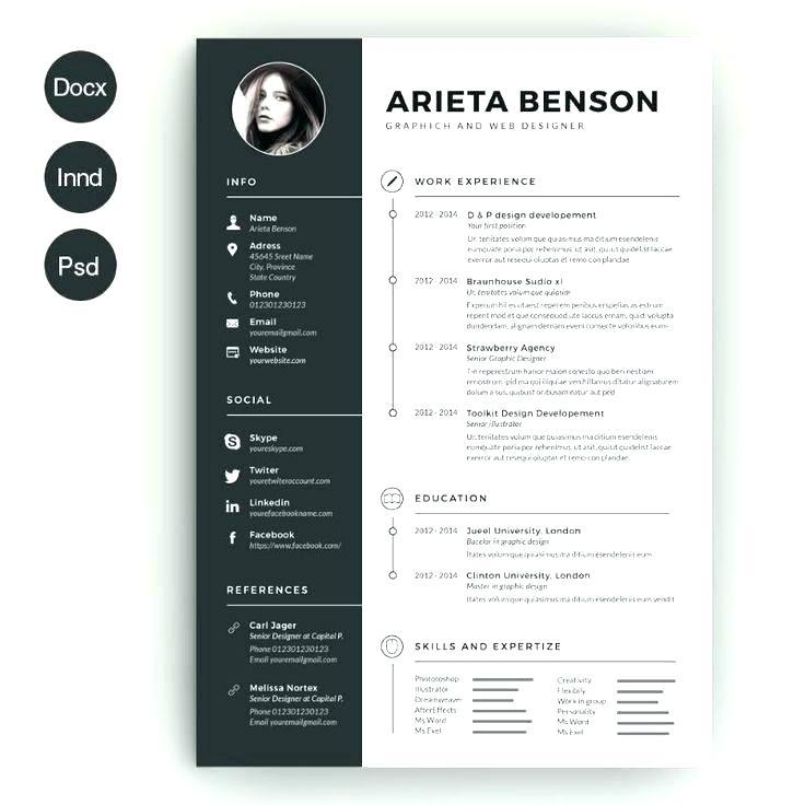 Civil Engineer Resume Template Download