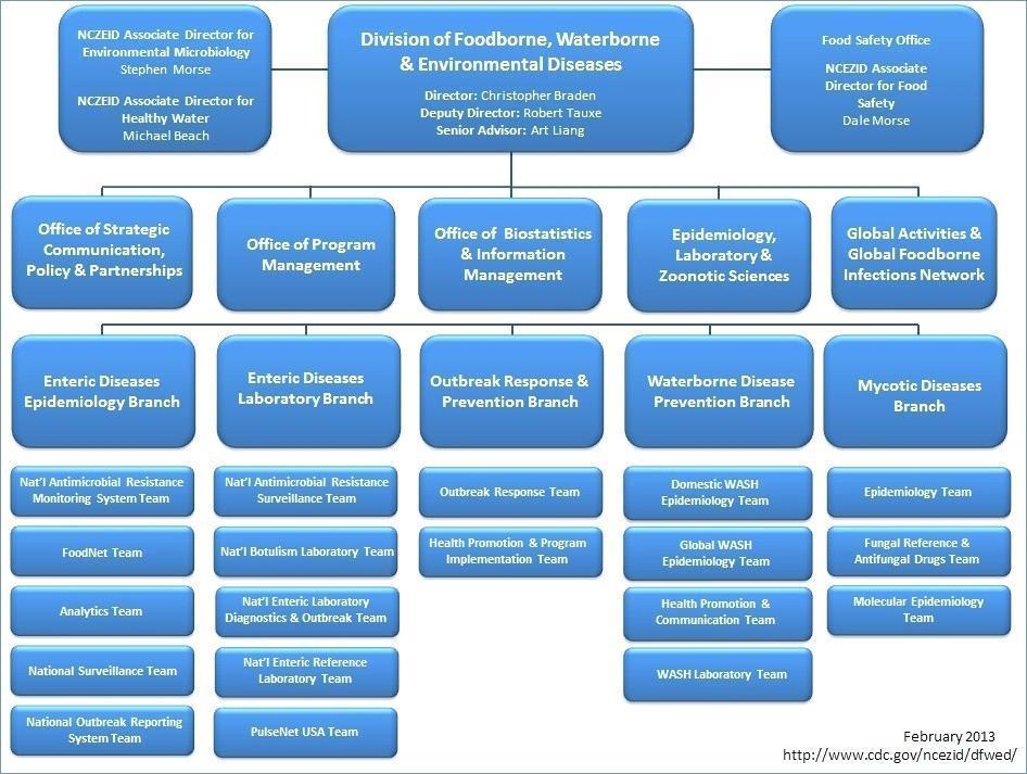 Company Organizational Chart Microsoft