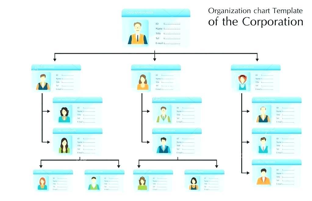 Company Organizational Chart Template Microsoft