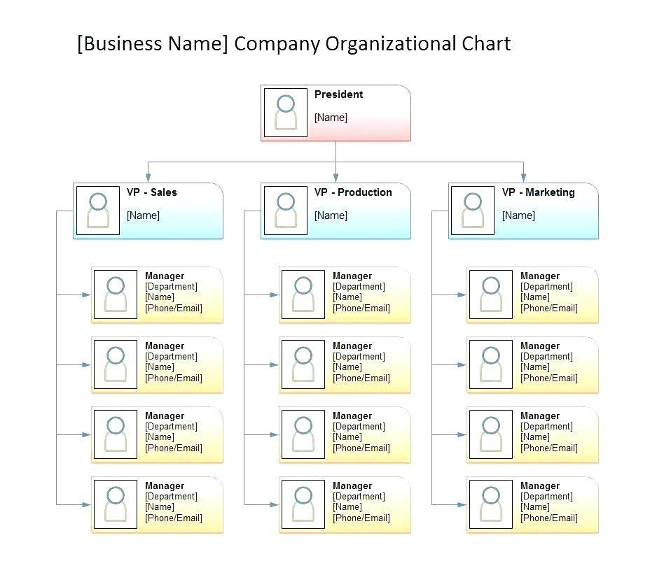 Company Organizational Chart Template Word