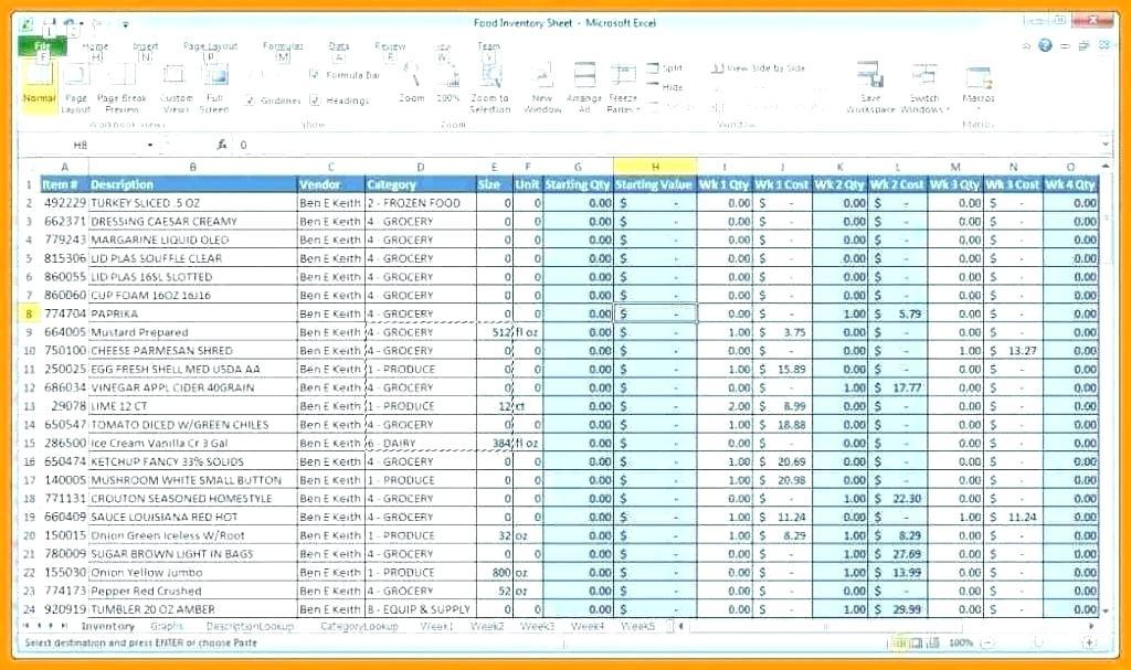 Computer Inventory Database Template Excel