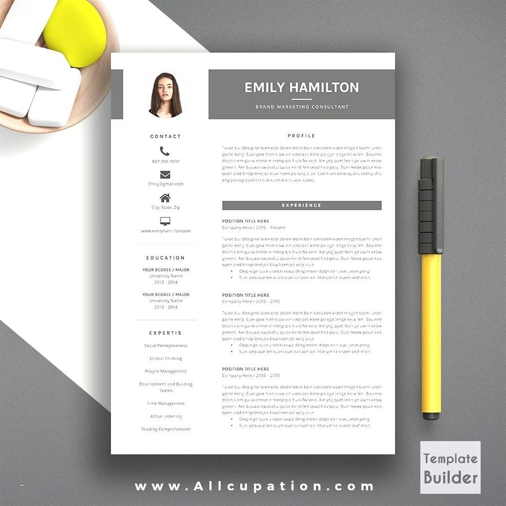 Creative Resume Layout Templates