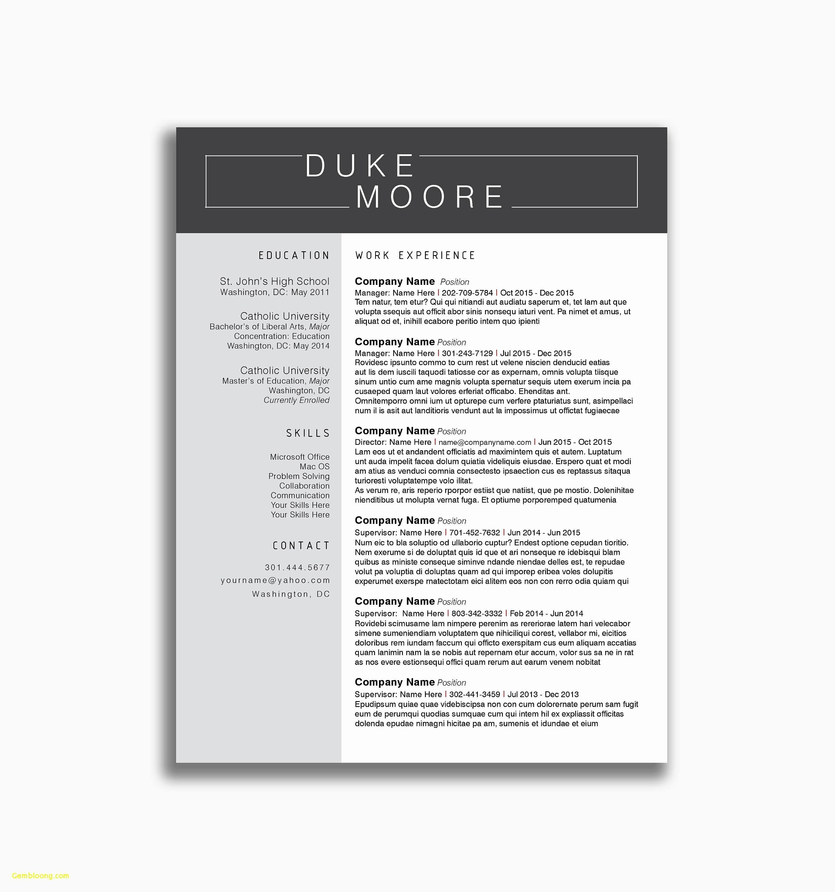 Curriculum Vitae Resume Template Download