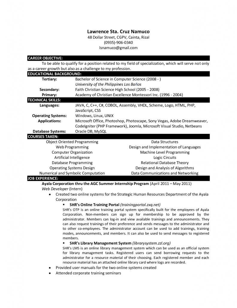 Curriculum Vitae Resume Templates Examples
