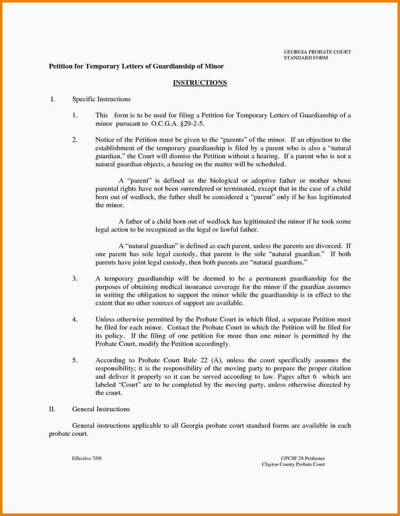 Custody Agreement Template Florida