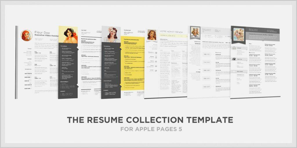 Cv Template Mac Pages